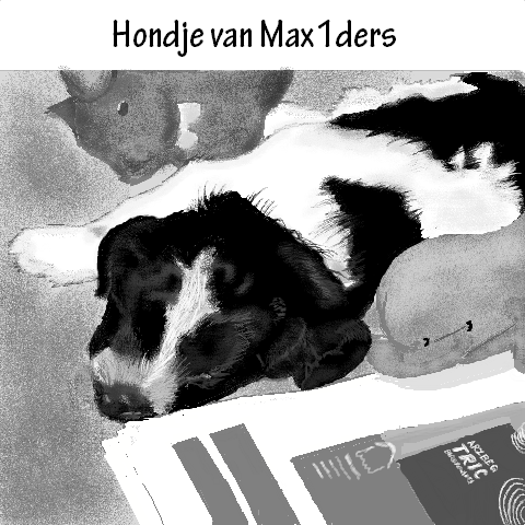 Hond vn Max1ders